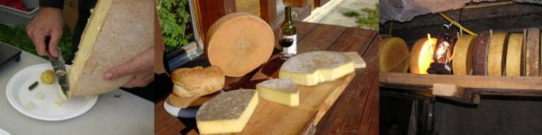 cropped-fromages_raclette.jpg